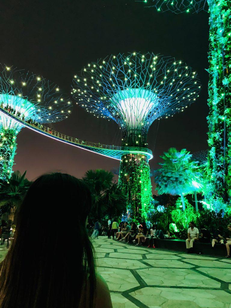 Supertrees Singapur Show