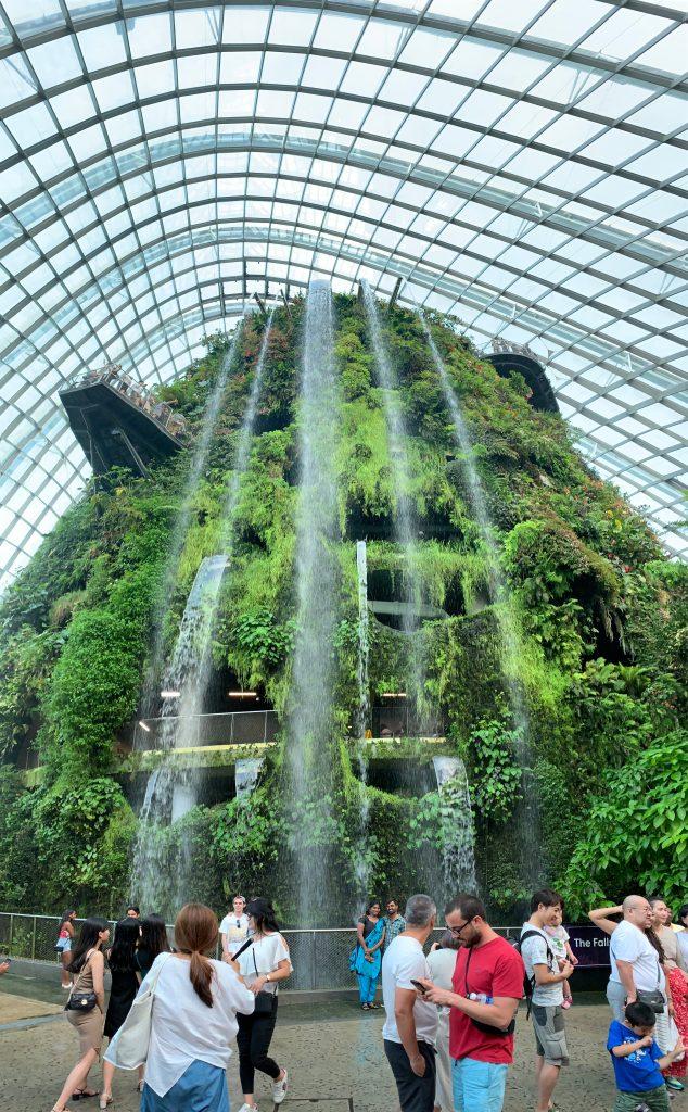 Cascada en Edificio Cloud Forest