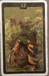 Scarabeo Lenormand Birds Card