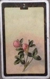 Scarabeo Lenormand Clover Card