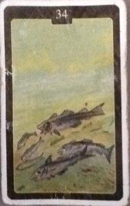 Scarabeo Lenormand Fish Card