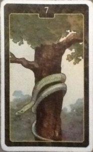 Scarabeo Lenormand Snake Card