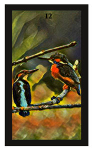 Lenormand Birds Card