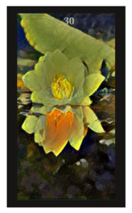 Lenormand Lily Card