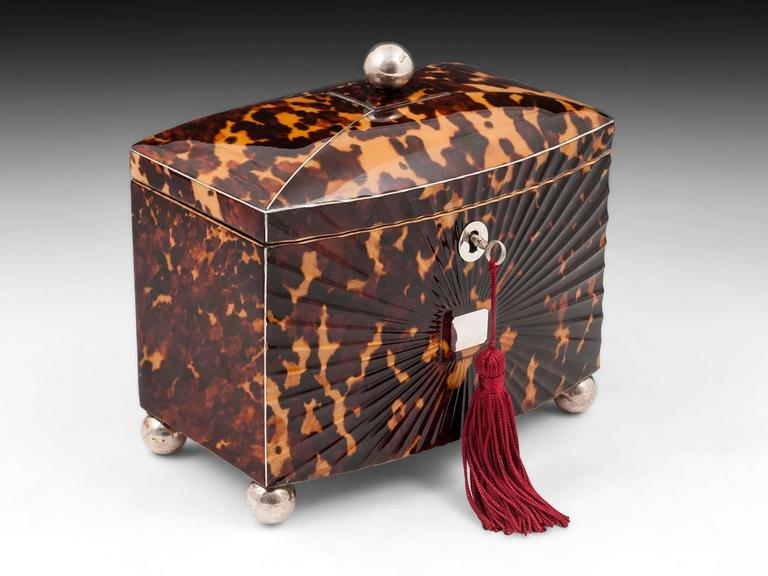 Regency Starbust Tortoiseshell tea caddy