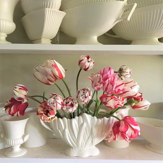 Tulips, The Landgardeners