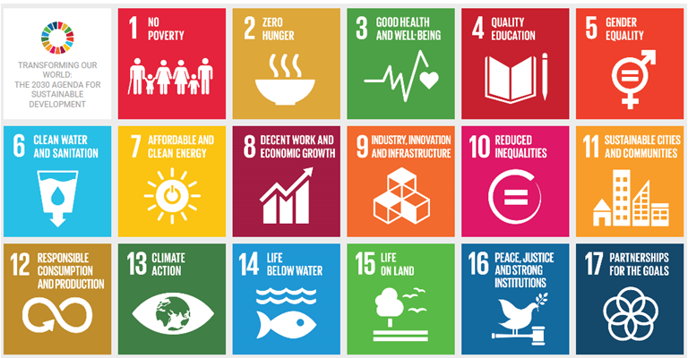 Roma inclusion in the SDGs: Call for experts