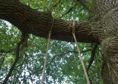 Our preferred method of fixing the ropes to the branch,we only use marine fittings lock them in place.  SASPOONER