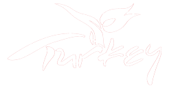 Go To Turkey – Tourist Information Office Logo