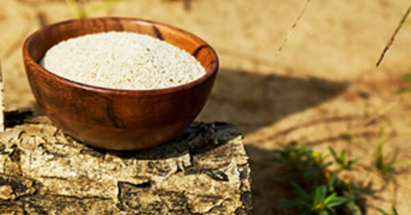 Fonio, a Grain That Merits To Be In Your Diet