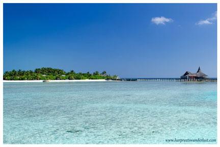 This gorgeous paradise that I woke up to!