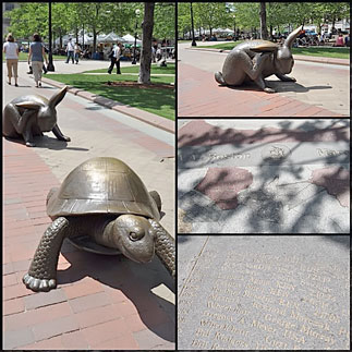footsteps-inthe-us-of-a-boston-revealed-8