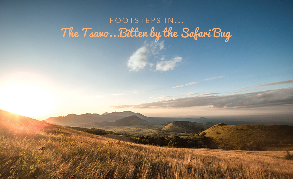 Footsteps in Kenya…bitten by the Safari Bug in the Tsavo