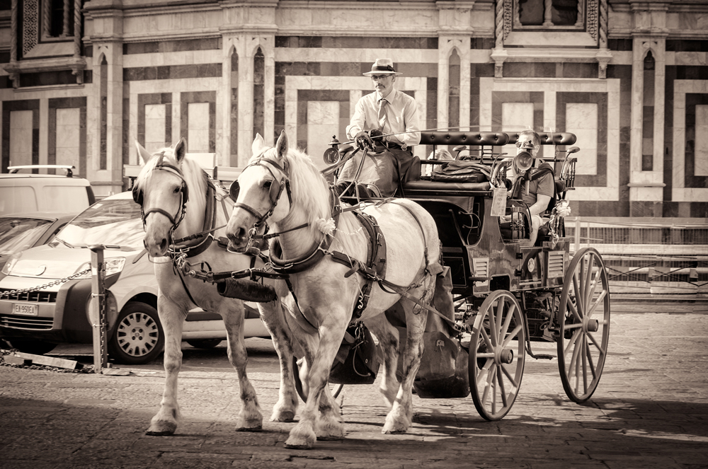 Horse and Carriage outside the Duomo