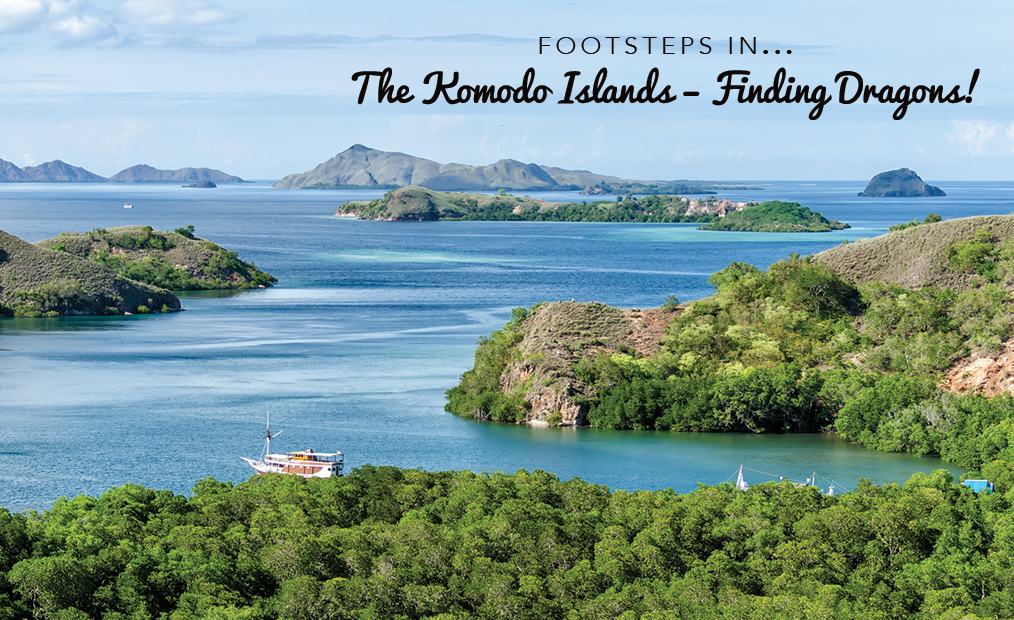 Footsteps in…The Islands of Komodo – Finding Dragons!