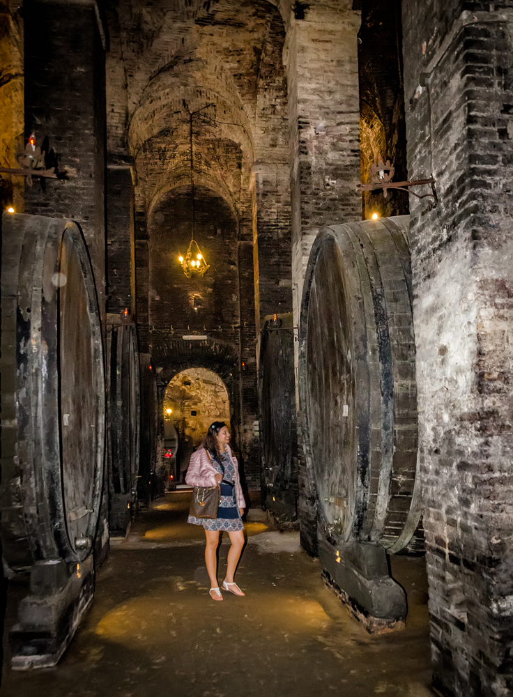 Dwarfed by ginormous wine barrels!