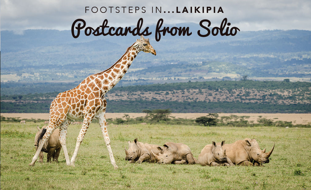 Footsteps in Laikipia…Postcards from Solio