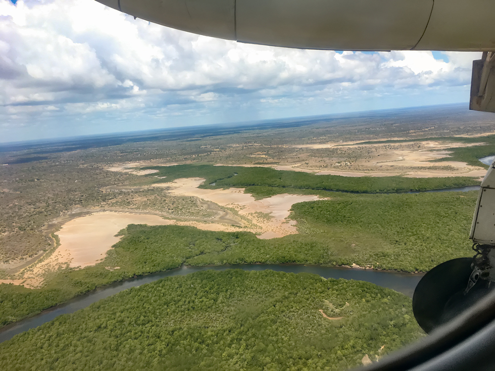 Flying over Mangrove Swamps