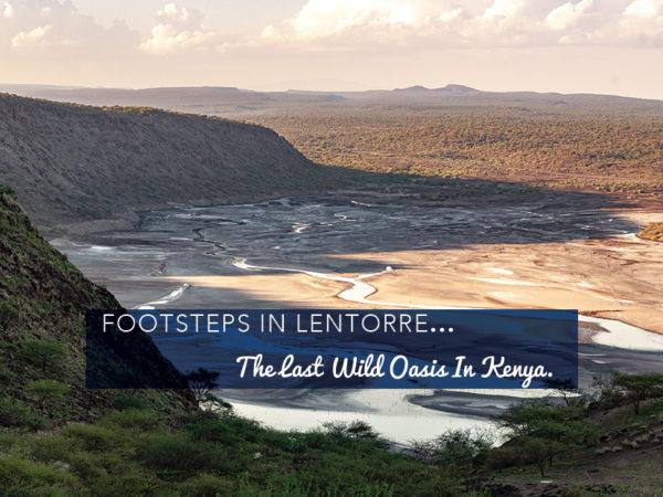 Footsteps in Lentorre…The Last Wild Oasis in Kenya