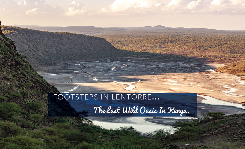 Footsteps in Lentorre...The Last Wild Oasis in Kenya