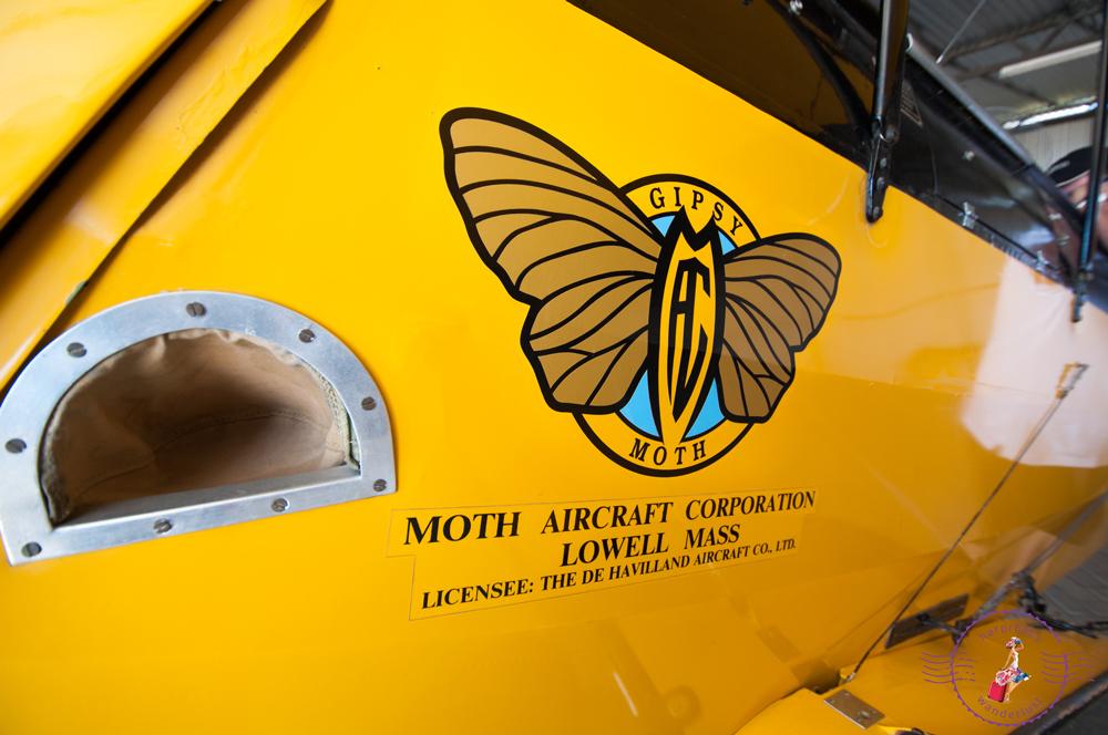 The original Gypsy Moth