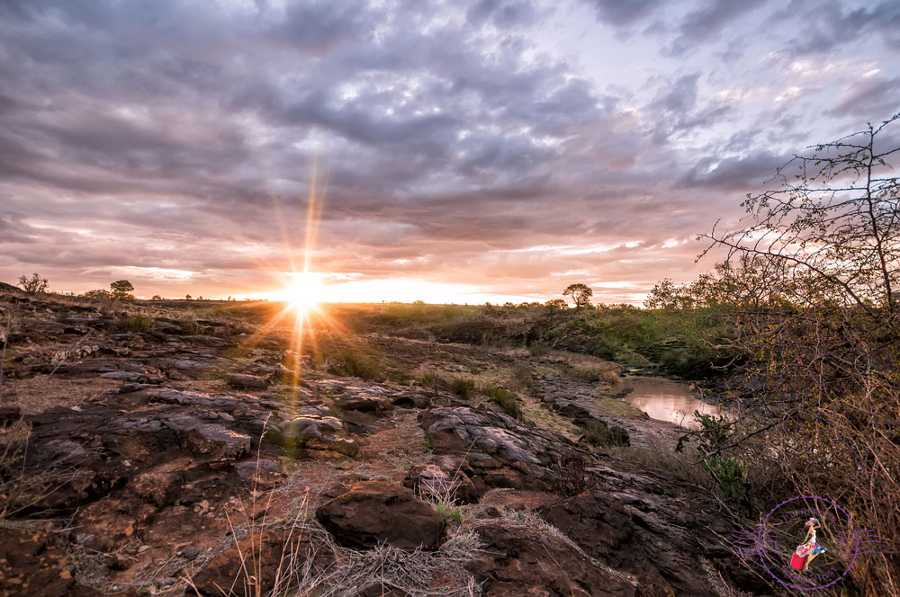 Sunset on the savannah plains
