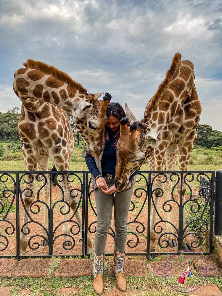 Harpreet and two beautiful giraffes