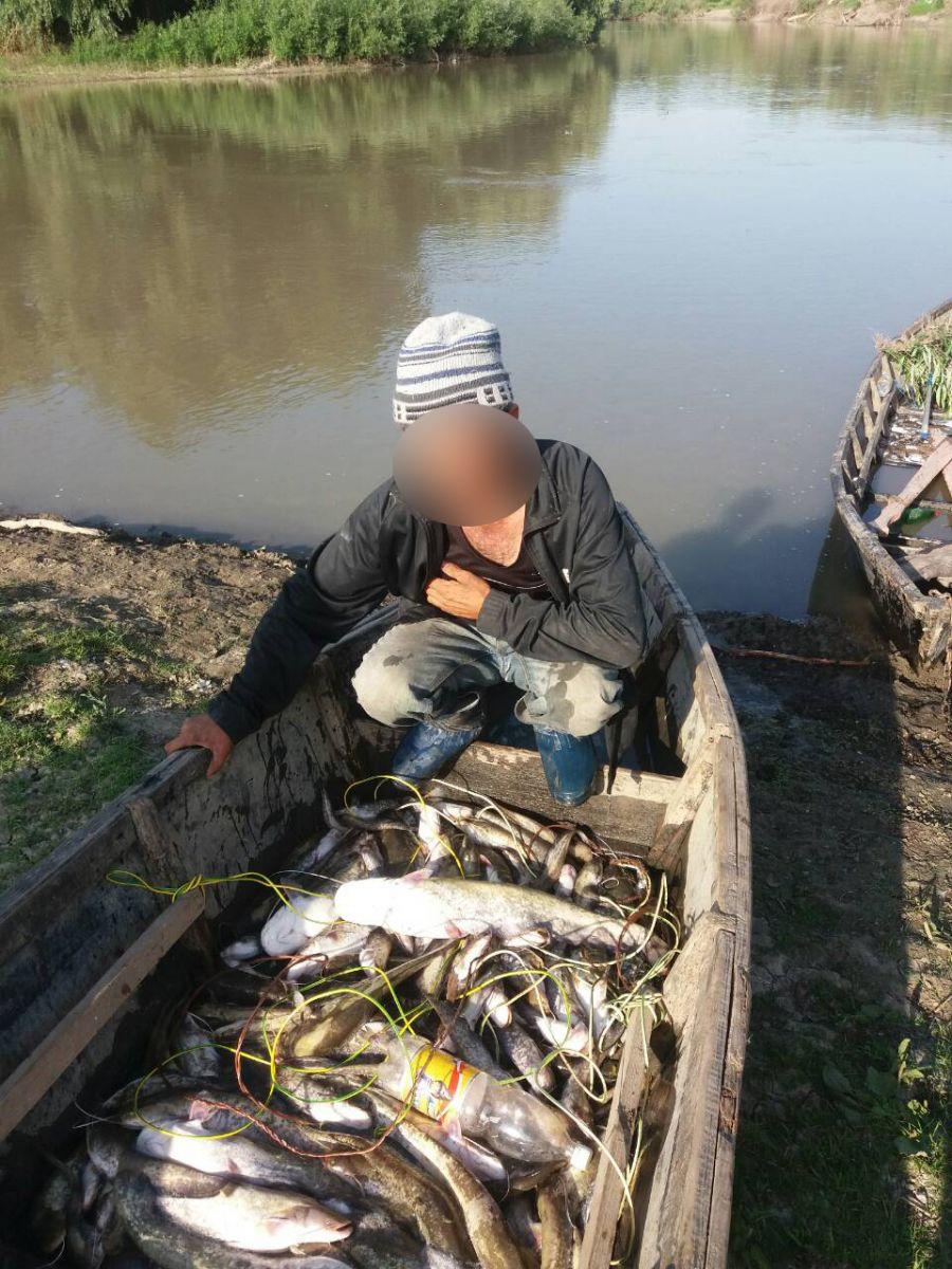 Cazuri de pescuit ilegal în apele râului Prut