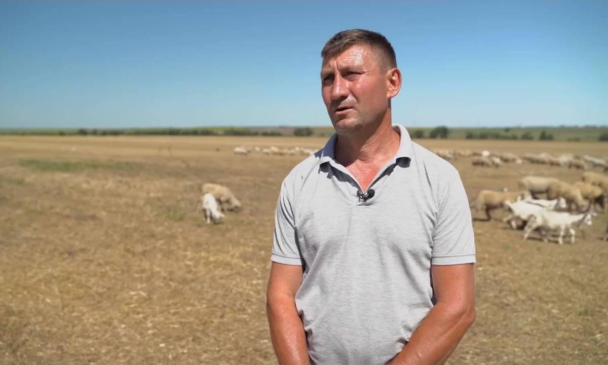 """Oierul Stepan Sabia: """"Această rasă este unică în Republica Moldova"""""""