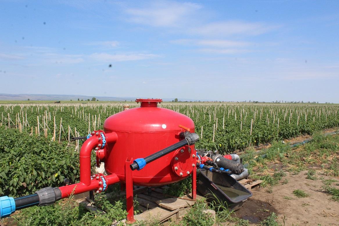 Tochile-Răducani, raionul Leova:  tehnologii noi, irigare prin picurare