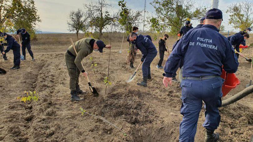 """Poliția de Frontieră la acțiunea socială """"Un arbore pentru dăinuirea noastră"""""""