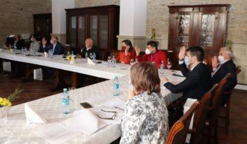 Ședința ordinară a Consiliului Regional pentru Dezvoltare Sud