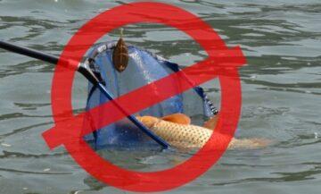 Pescuitul în râul Prut este interzis. Motivul – raionul Cahul se află sub cod roșu de Covid-19