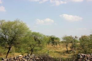 Rajasthan Mining
