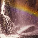 McKenzie Falls in the Grampians National Park, Victoria, Australia. Photo by Stuart Forster.