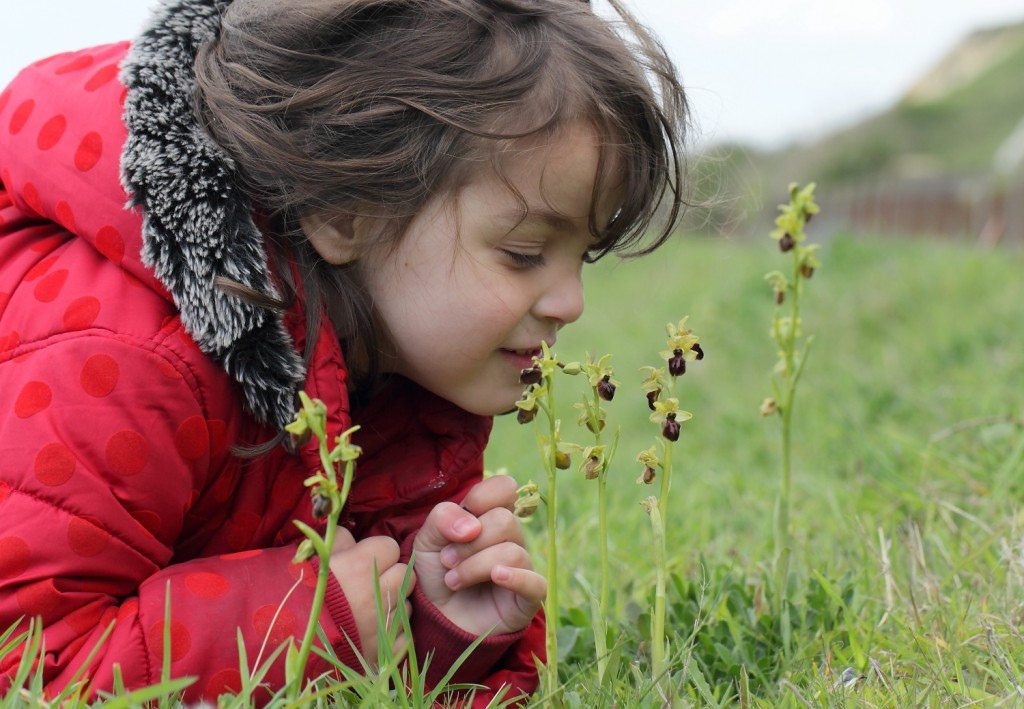 3_May17_Early Spider Orchid and child_James Lowen_6674