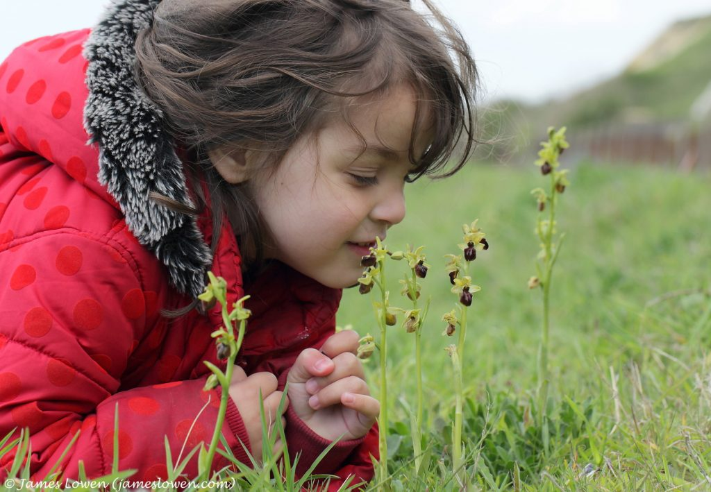 1_Early Spider Orchid and child_James Lowen_6674 copy