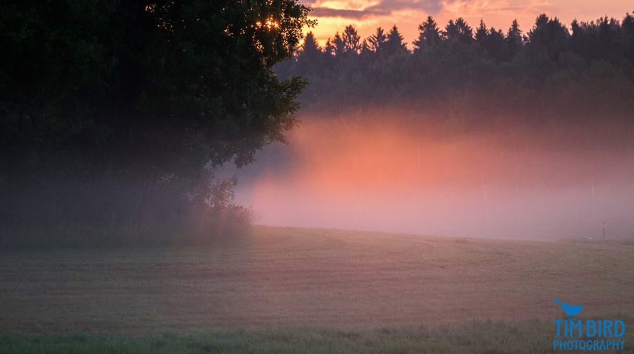 Early morning mist and rising sun at Viiki, Helsinki