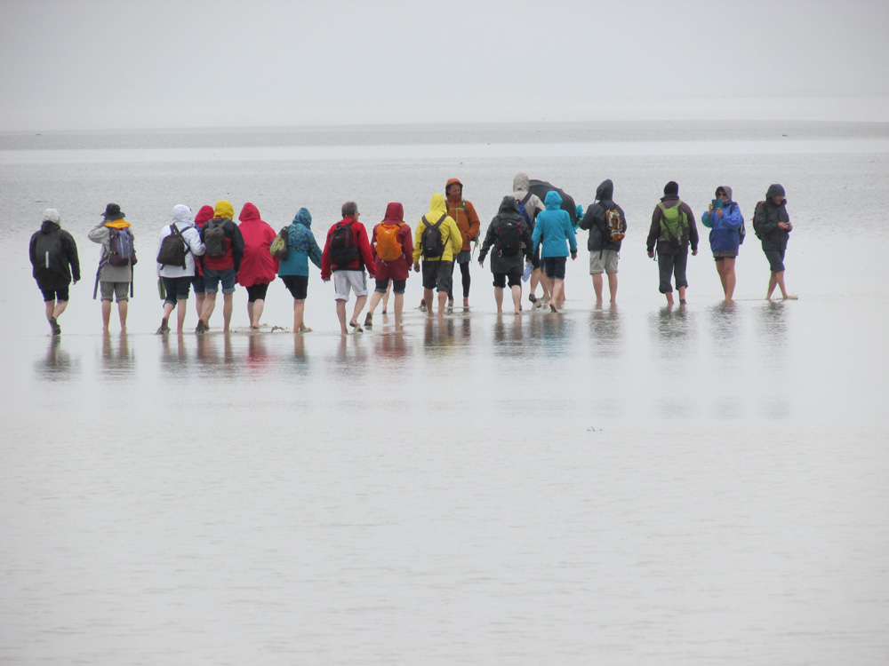 People walking in the Bay of Mont Saint-Michel by Gillian Thornton.
