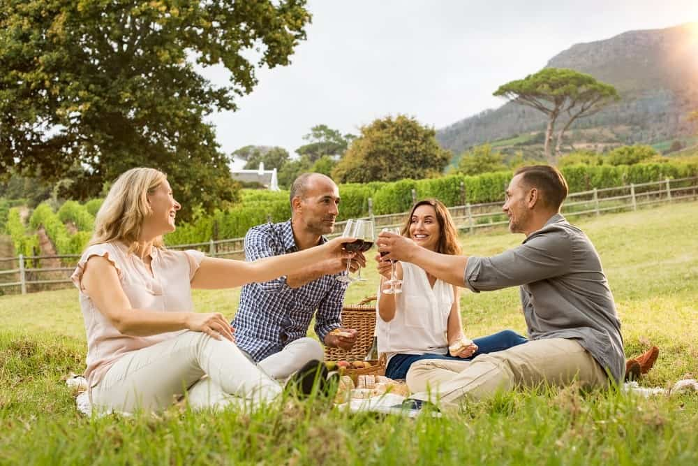 Friends clinking glasses of wine at a picnic. Connecting with other people