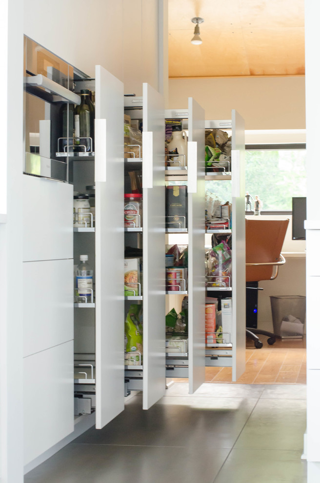 contemporary-kitchen-remodel-pantry-pull-outs-gary-brown-homes-llc-img_e59187eb03ab1acd_9-0454-1-4303391