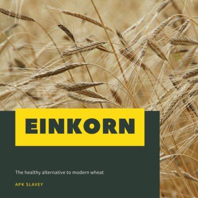 Einkorn (1)