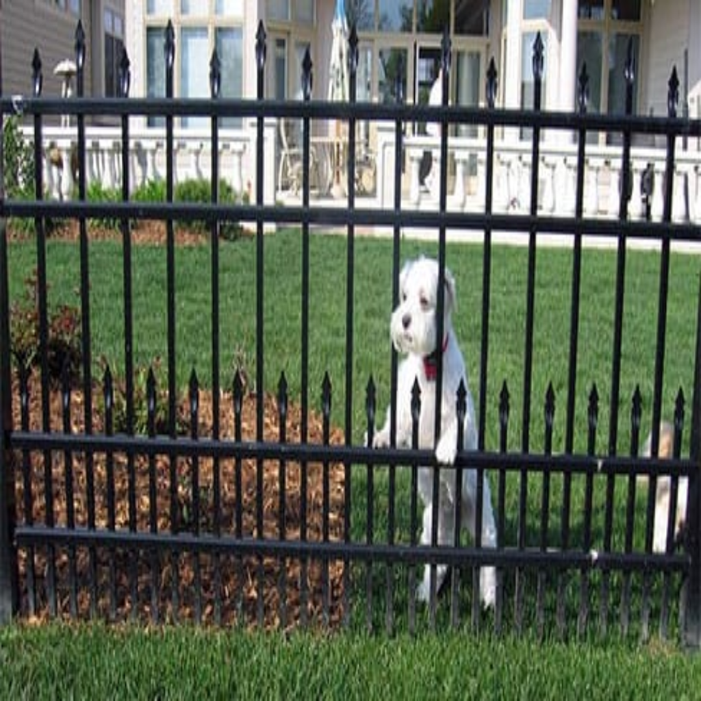 puppy-picket-aluminum-fence-charlotte