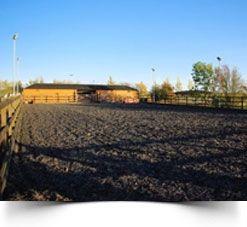 horse training field