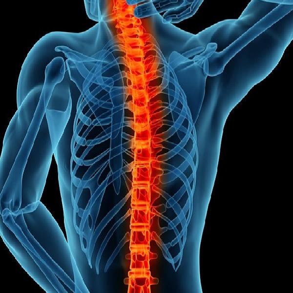 Spine Care Program