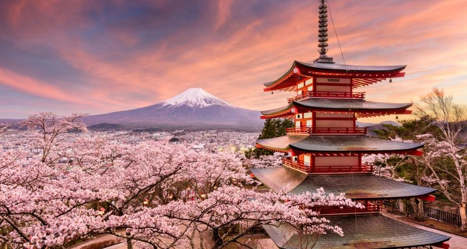 Japan itinerary customized holidays on a budget