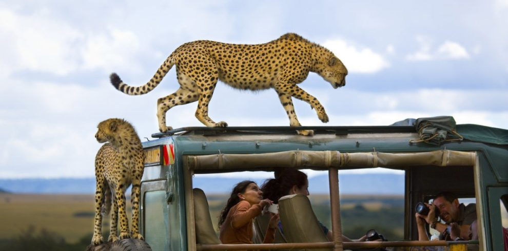 Kenya Safari Budget Holidays Customized