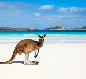 Australia & New Zealand Customized Budget Holidays