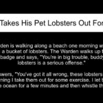 A Man Takes His Pet Lobsters Out For A Swim