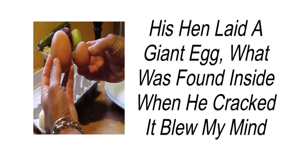 His Hen Laid A Giant Egg